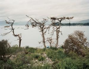 Péninsule de Hirota, Rikuzentakata, 31 août 2011 © Thierry Girard